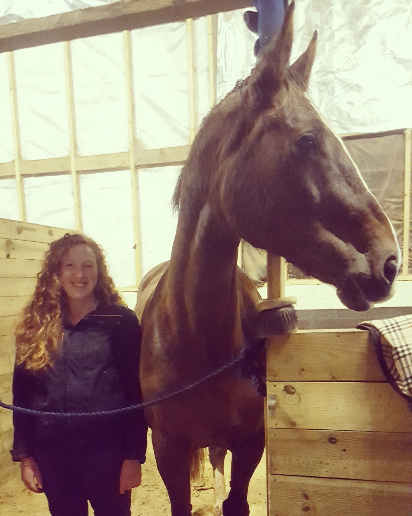 Tall Horse