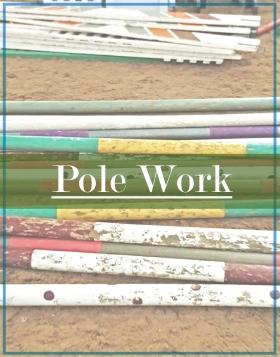 PoleWork