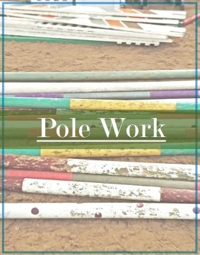 PoleWork.jpg